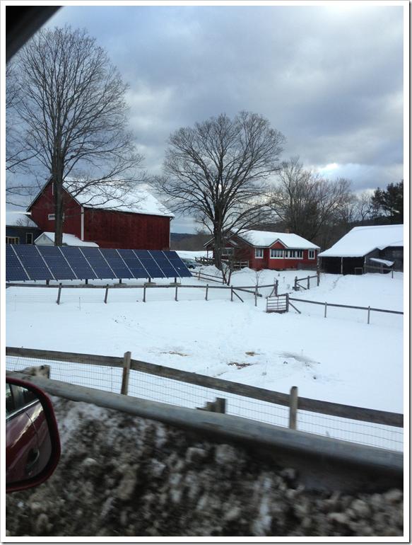 montague farm